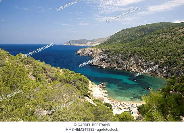Spain, Balearic Islands, Ibiza island, Cala d' En Serra