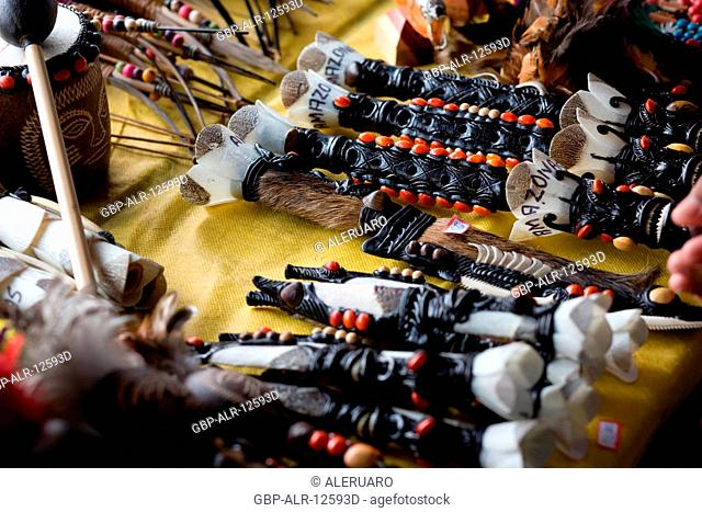Indigenous craft, Amazônia, Manaus, Amazonas, Brazil
