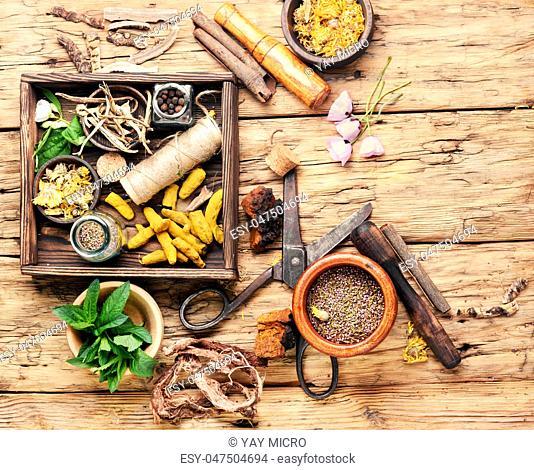 Natural herbal medicine,medicinal herbs and herbal medicinal root.Natural herbs medicine.Healing herbs
