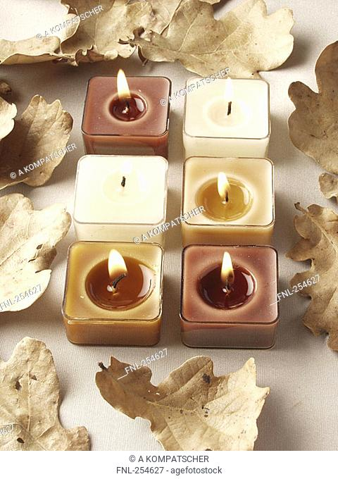 High angle view of lit candles and autumn leaves