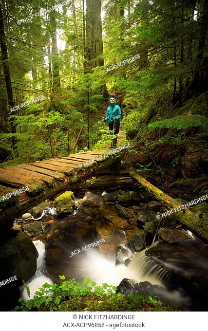 Female hiker standing on a bridge over Hobbs Creek on the West Coast Trail, Pacific Rim National Park, British Columbia, Canada