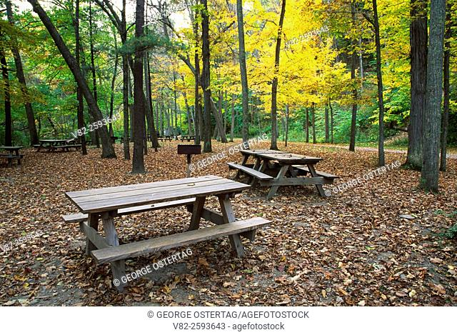 Picnic Area, Robert H Treman State Park, New York