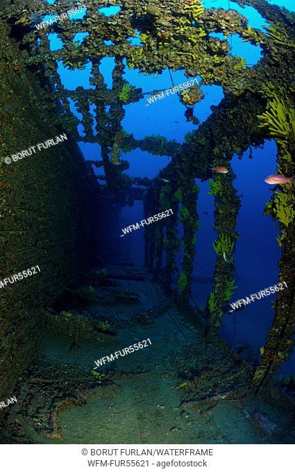 Brioni Steamboat Wreck, Vis, Adriatic Sea, Croatia