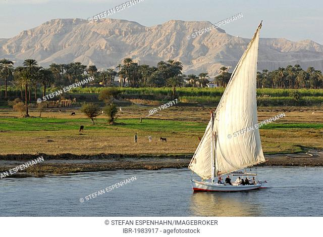Felucca, a traditional wooden sailing boat, on the Nile, Luxor, Nile Valley, Egypt, Africa