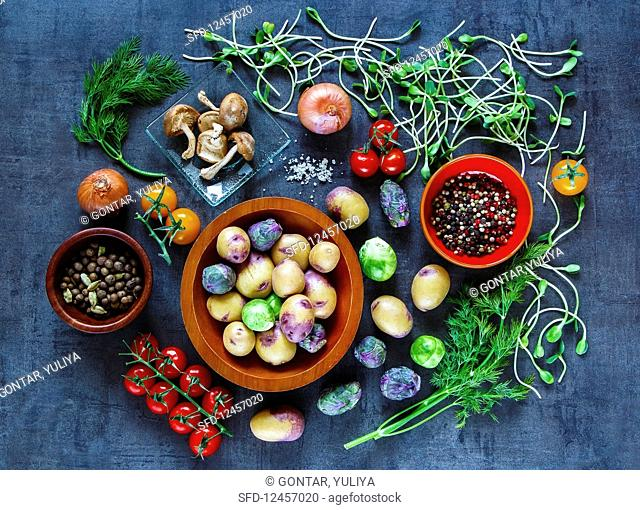 An arrangement of vegetables, herbs, mushrooms and spices for vegetarian cuisine