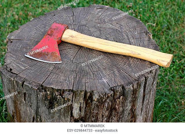 axe lying on the stump