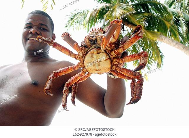 Man showing majid crab, San Blas islands, Kuna Yala, Caribbean, Panama