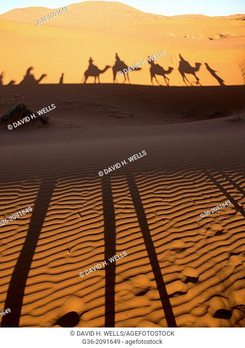 Shadow of riders and camels through sahara desert in Erg Chebi, Morrocco