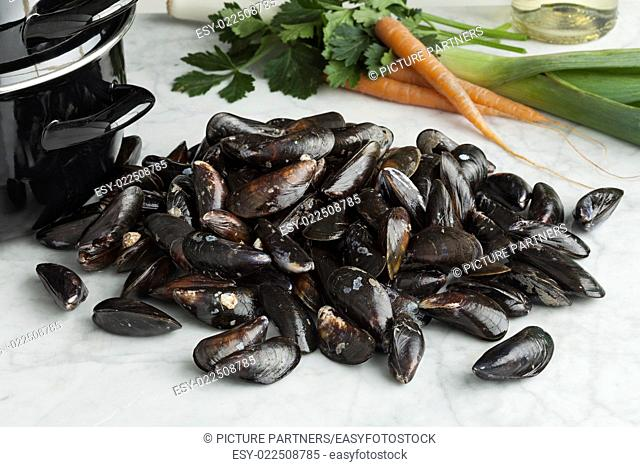 Fresh uncooked common mussels in the shell