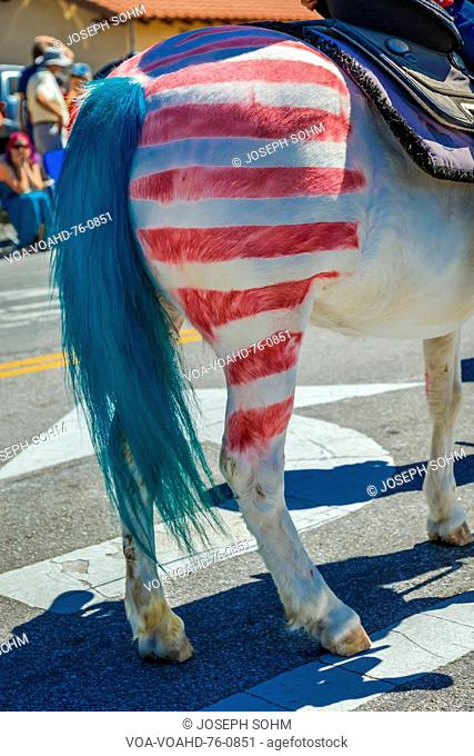 JULY 4, 2016 - Citizens of Ojai California celebrate Independence Day - horse with red and white stripes