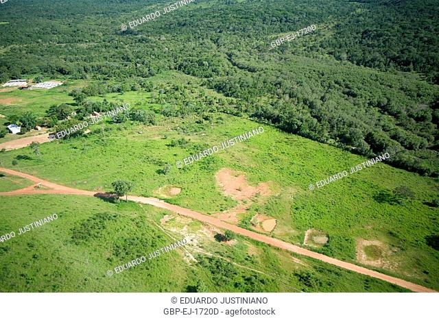 Mosaic with Field and Forest, Aquidauana, Mato Grosso do Sul, Brazil
