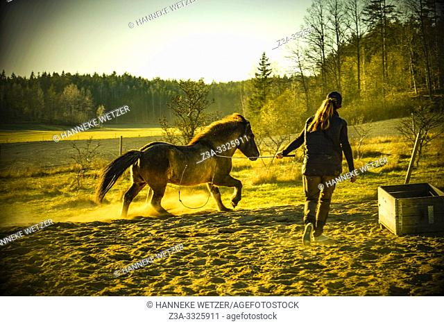 Girl training a horse in Sweden