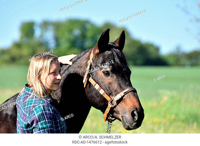 Woman with American Quarter Horse, Stallion, stud stallion, breeding stallion, old horse, 27 years of age