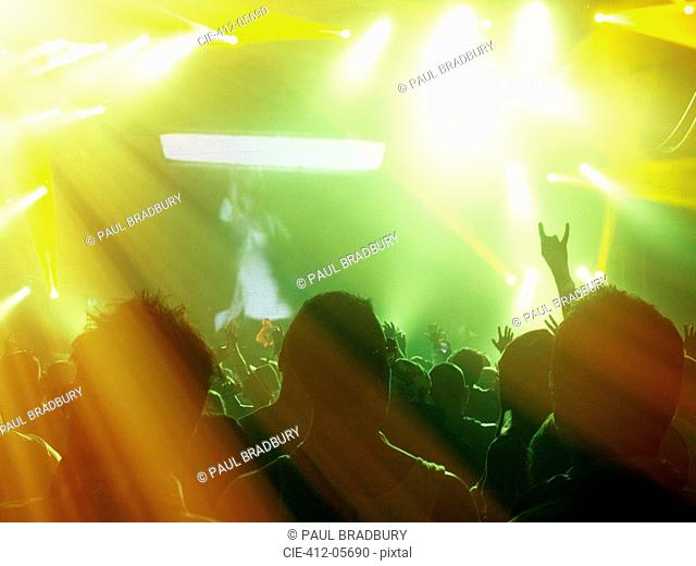Silhouetted fans facing illuminated stage