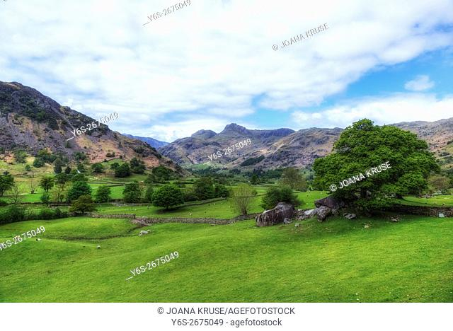 Langdale Pikes, Lake District, Cumbria, England, UK