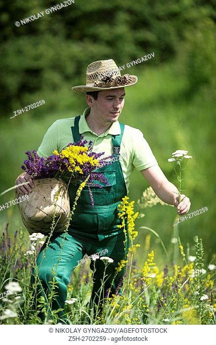 Russia. Belgorod region. Young man in the field to gather herbs