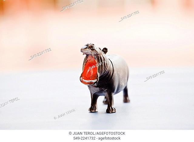 Close up of Miniature Toy Hippo