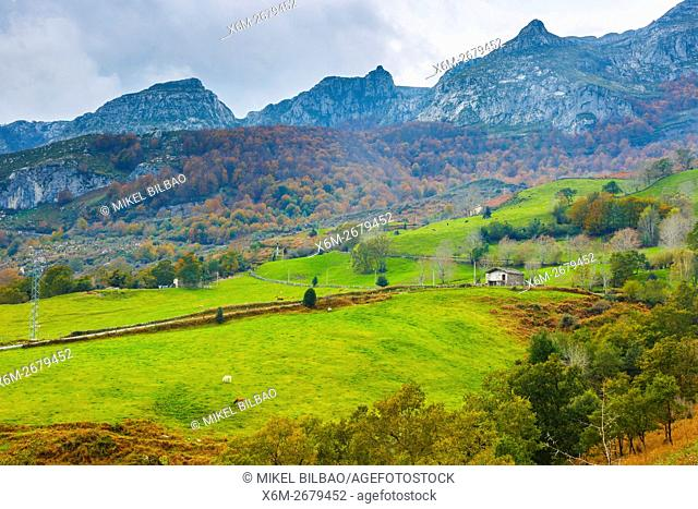 Beechwoods and meadows. La Sia mountain pass. Collados del Ason Natural Park. Cantabria, Spain