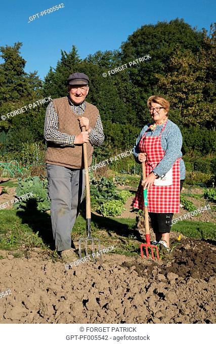 ELDERLY COUPLE IN THE ALLOTMENT GARDEN, TOWN OF VERNEUIL-SUR-AVRE (27), FRANCE
