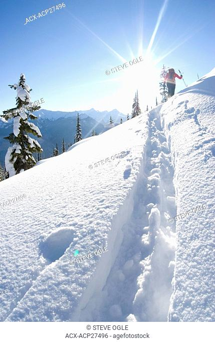 A young woman skier climbs up Corbin Pass near Revelstoke, British Columbia