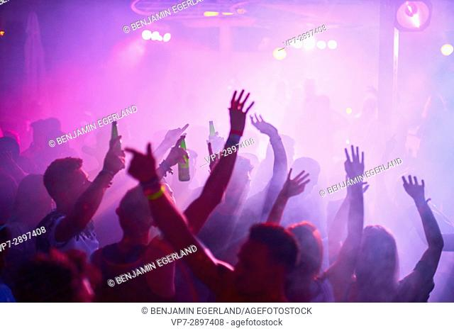 arms raised at music festival