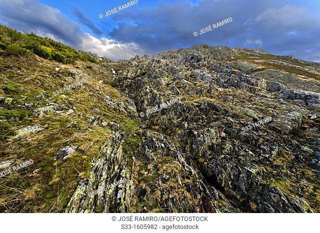 The Berceras in the Sierra Norte  Guadalajara  Castilla la Mancha  Spain