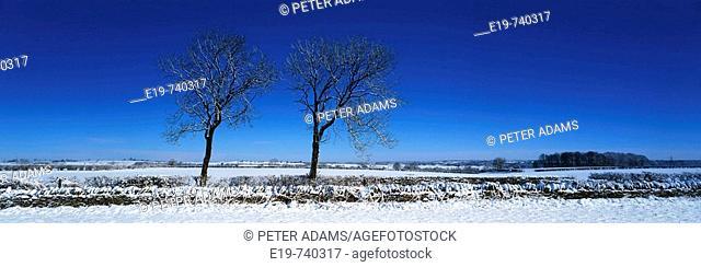 Winter, Wotton Under Edge, Gloucestershire, UK