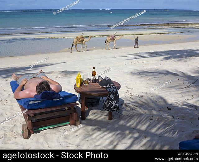 Tourists sunbathe at holiday resort with local man pulling camels for hire in background on the beach at Tiwi, on Indian Ocean coast, Kenya