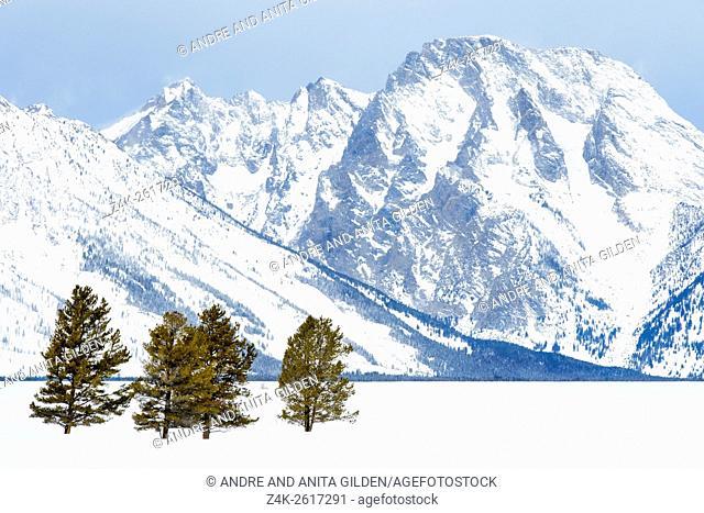 Grand Teton mountains during winter, seen from the antelope flats, Grand Teton national park, Wyoming, USA