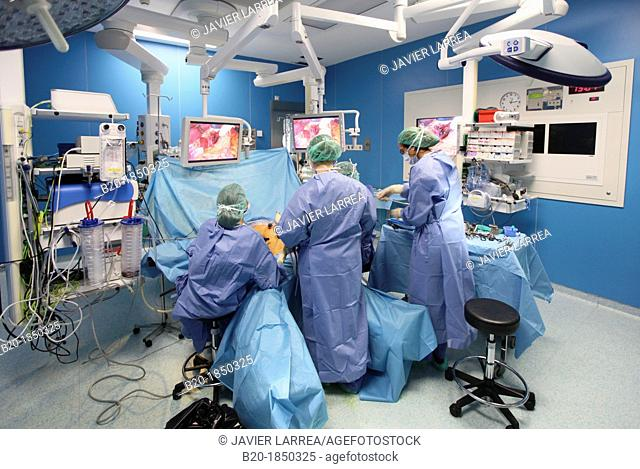 Hiatal Hernia Surgery, Laparoscopy, General Emergency Surgery, Operating Theatre, Donostia Hospital, San Sebastian, Donostia, Gipuzkoa, Basque Country, Spain