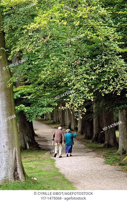 Elderly couple walking in a park, Paleis Het Loo, Apeldoorn, Netherlands
