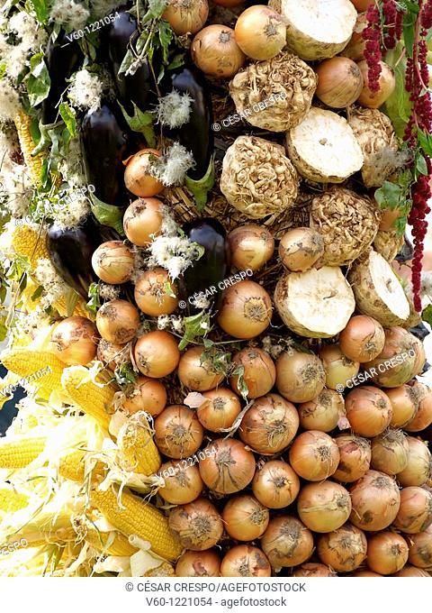 -Healthy Food- Vegetables