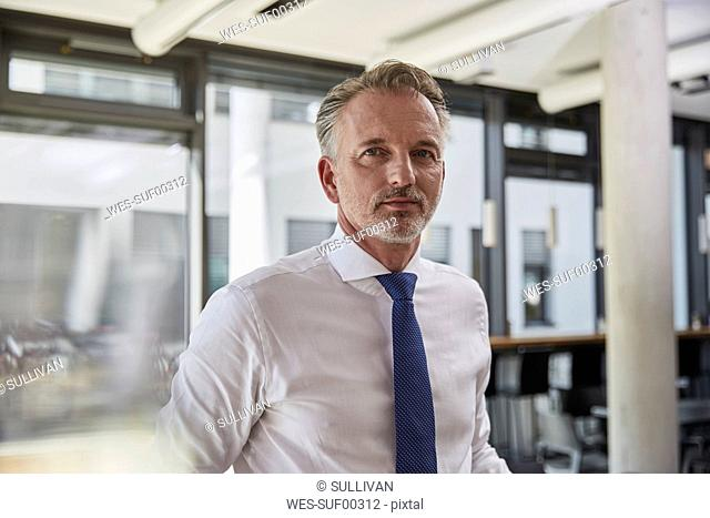 Portrait of a successful businessman wearing shirt and tie