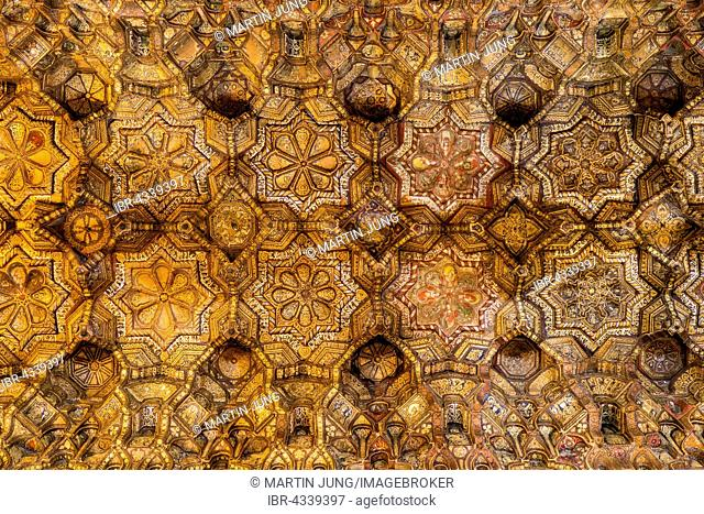 Fatimid wood ceiling, Arabic carving technique, Muqarnas, Nave of Cappella Palatina, Palatine Chapel of the Palace of the Normans or Royal Palace of Palermo