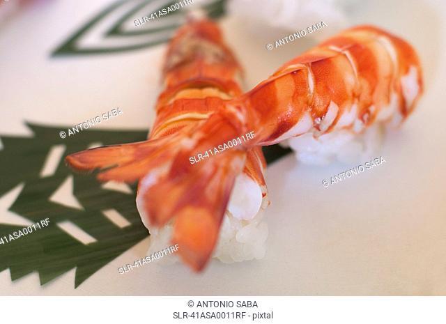 Close up of prawn sushi