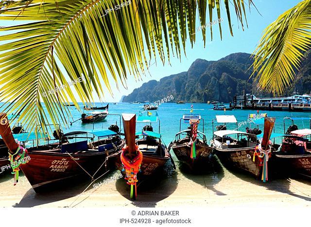Thailand Krabi Phi Phi Islands Koh Phi Phi Don Boats on the beach in Ao Tonsai (Tonsai Bay)