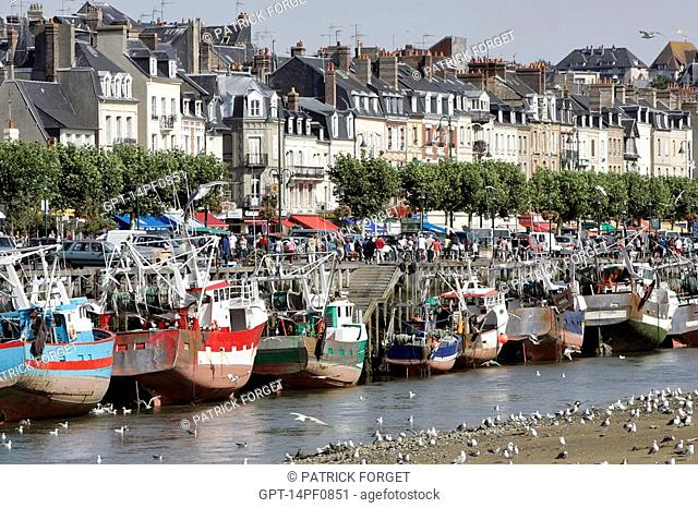 BOAT AND SEAGULLS, THE PORT OF TROUVILLE-SUR-MER, CALVADOS 14, NORMANDY, FRANCE