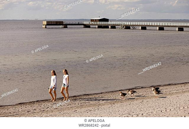 Young female friends walking on shore at beach