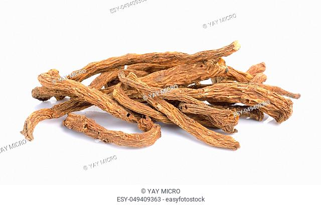 angelica sinensis herb on a white background