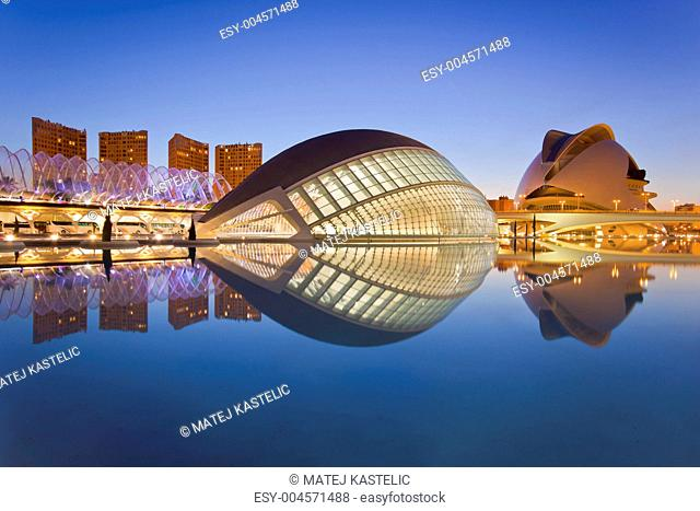 Valencia&039,s City of Arts and Science Museum
