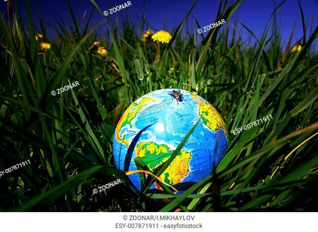 globe in grass globe in grass