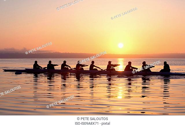 Nine people rowing at sunset
