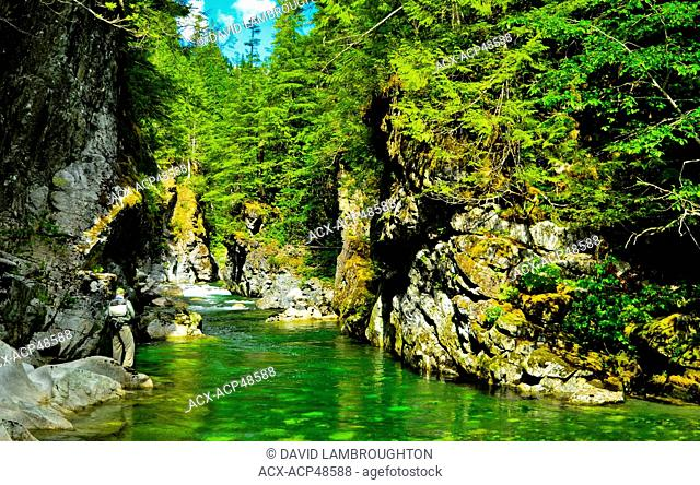 Herber River, Vancouver Island, British Columbia, Canada