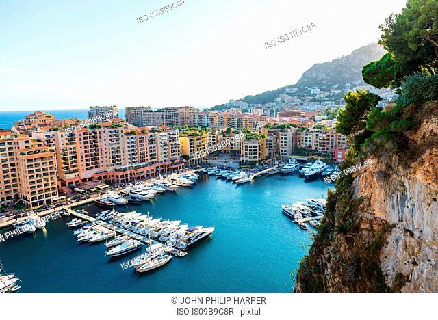 Coastal cityscape with skyscrapers and yacht marina, Monaco