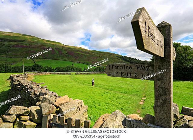 Walker on the Pennine Way, Kisdon Hill, Thwaite, Yorkshire Dales, England, UK