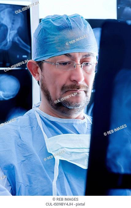 Surgeon examining Xray image