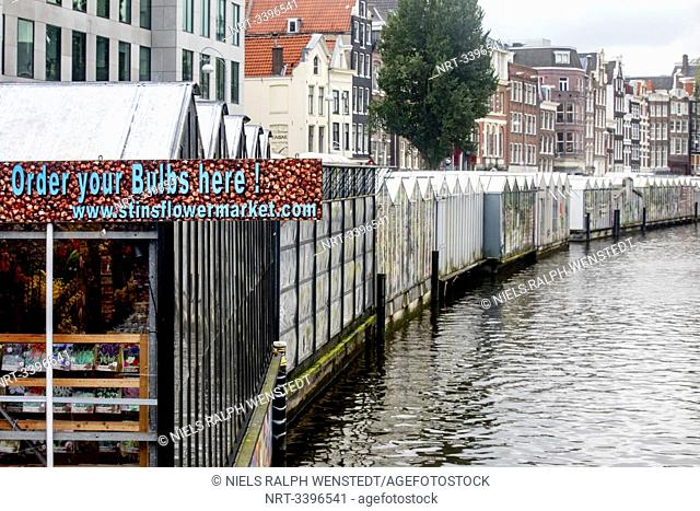 ASMTERDAM - Most bulbs bought at Amsterdam's flower market fail to bloom. Most of the bulbs bought on Amsterdam's flower market fail to bloom and those that do...