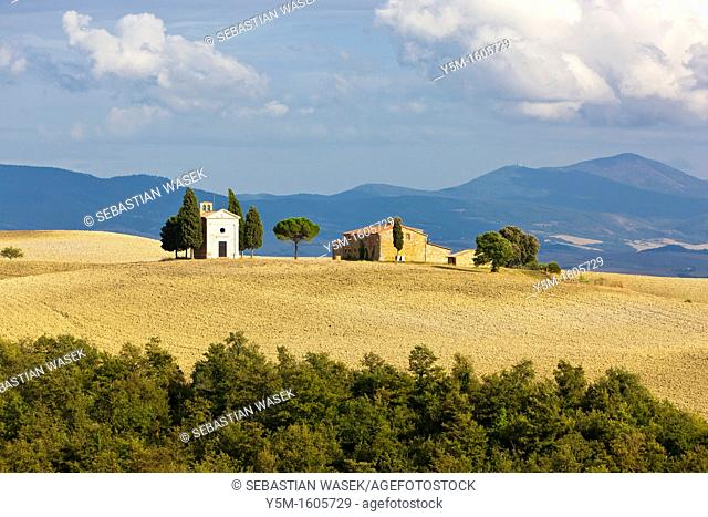 Rolling landscape near Pienza, Val d'Orcia, Province of Siena, Tuscany, Italy, Europe