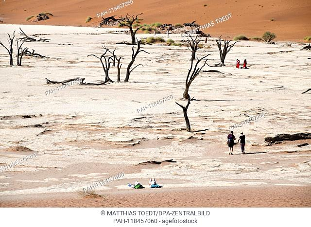 Tourists walk in the Dead Vlei between the dead acacias, taken on 01.03.2019. The Dead Vlei is a dry, surrounded by tall dune clay pan with numerous dead acacia...