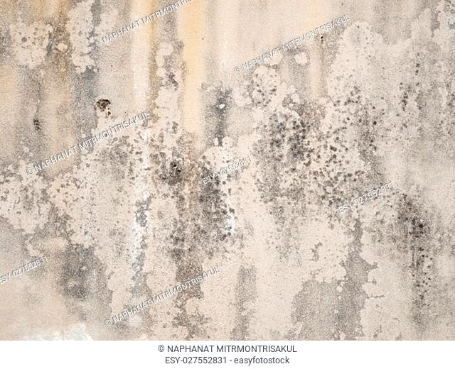 Old stained concrete wall